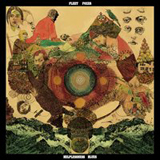 2011Fleet Foxes